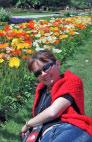 Ботанический сад, клумба